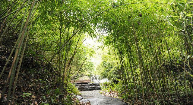 雙龍生態旅遊度假區1