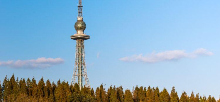 칭다오 TV 타워1