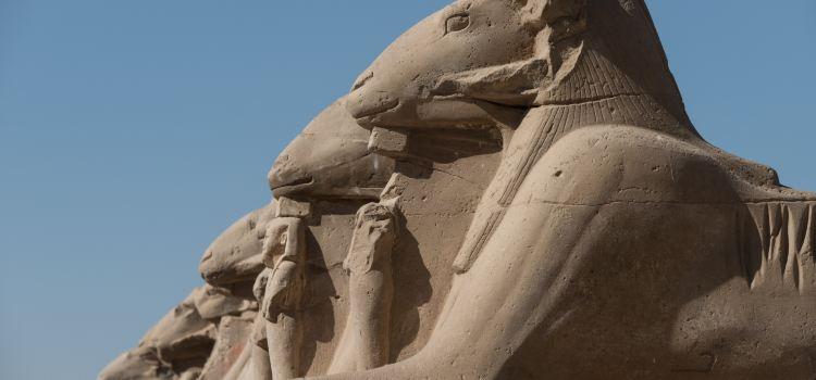 Karnak Open Air Museum1