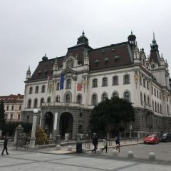 Ljubljana University User Photo