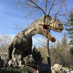 Calgary Zoo User Photo