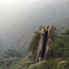 羊獅慕風景區用戶圖片