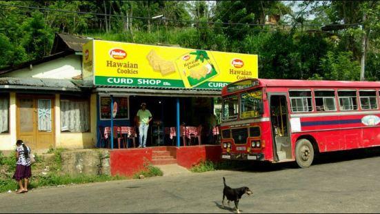 Ella Curd Shop