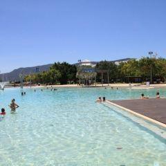 凱恩斯濱道瀉湖遊泳場用戶圖片