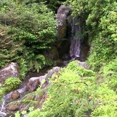 久保田花園用戶圖片