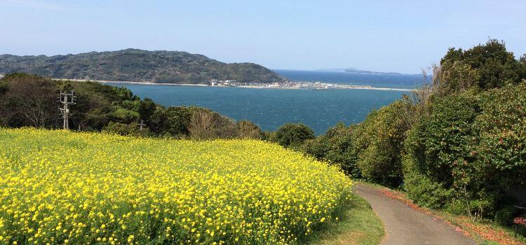 能古島海島公園(Nokonoshima Island Park)2