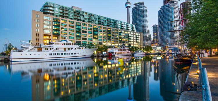 Toronto Waterfront3