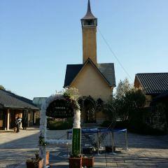 長島度假村用戶圖片