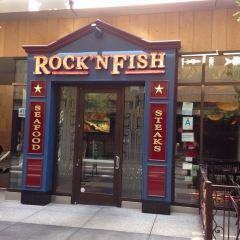 Rock'N Fish用戶圖片