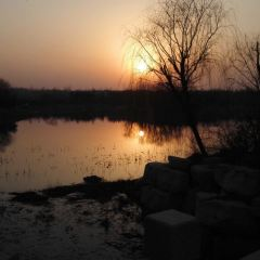 Bailang Oasis Wetland Park User Photo