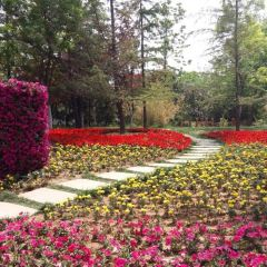 Jinan Botanical Garden User Photo