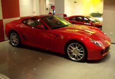 Exotic Car Gallery-奥兰多-湖绿紫