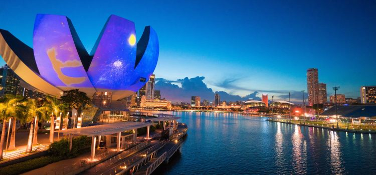 新加坡藝術科學博物館1