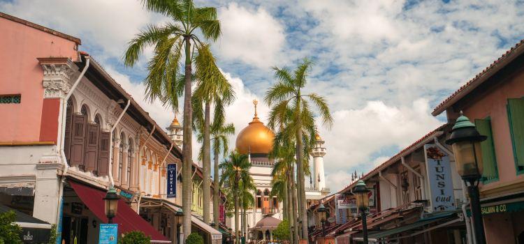 Masjid Sultan1