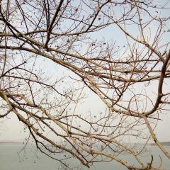 Rizhao Reservoir User Photo