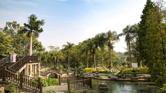 Guangxi Medical Botanical Garden