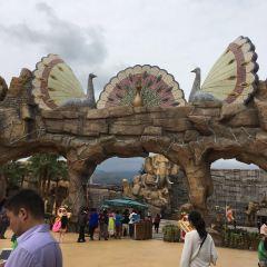 완다 시솽반나 국제 리조트 여행 사진