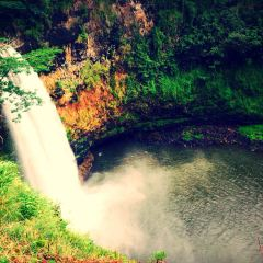 Wailua Falls User Photo