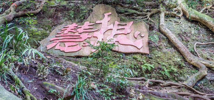 칭청산(청성산)3