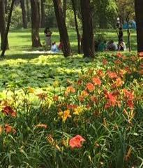 Golden Bay Forest Park User Photo