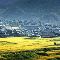 Gaoyi Ancient Village User Photo