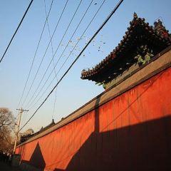Saikoji Temple User Photo