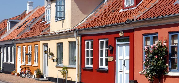The Funen Village1