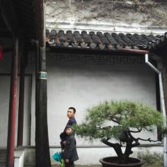 Lingering Garden User Photo