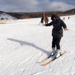 阿爾山滑雪場用戶圖片