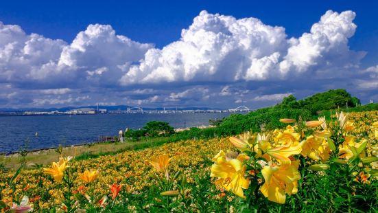 Maishima Lily Garden