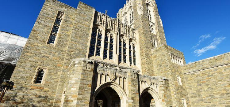 Princeton University1