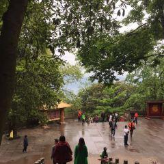 몽정산 여행 사진