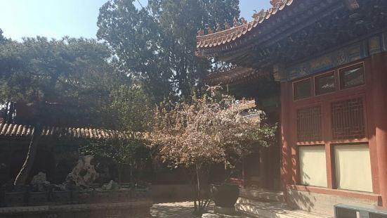 Dezhourenmin Park