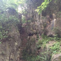 棲霞山用戶圖片