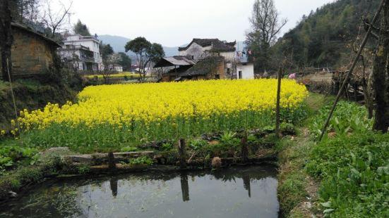 查記酒坊(慶源村店)