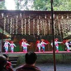Xishuangbanna Rainforest Valley User Photo