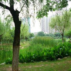 Guanshan Park in Holland Style User Photo