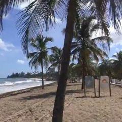 Ocean Park用戶圖片