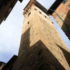 Torre del Oro User Photo