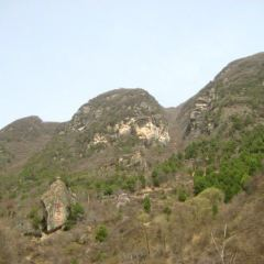 花石崖用戶圖片