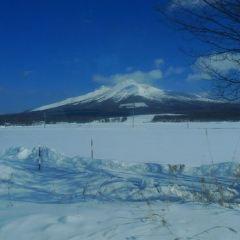 Yoteizan User Photo