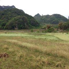 Bamei Village User Photo