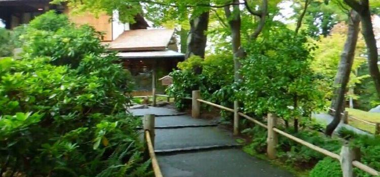 Japanese Garden3