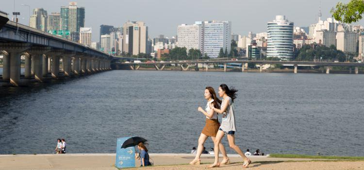 ソウル色公園3