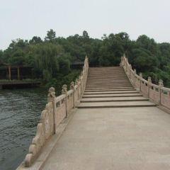 Hydrangea Island User Photo