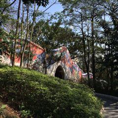 Haishan Park User Photo