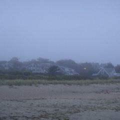 Jetties Beach用戶圖片