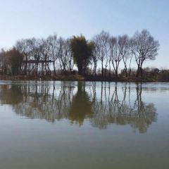 Lvbaoshi Park User Photo