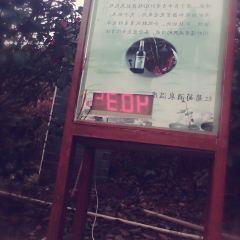 頤尚溫泉用戶圖片