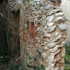 심포촌 여행 사진